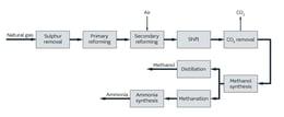IMAP Ammonia+™